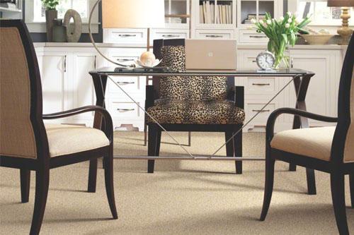 Carpet Myths Debunked